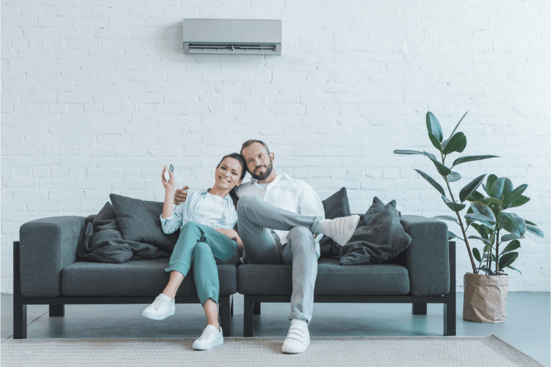 young couple on couch ductless air conditioner controls plant embracing smiling temperature white walls