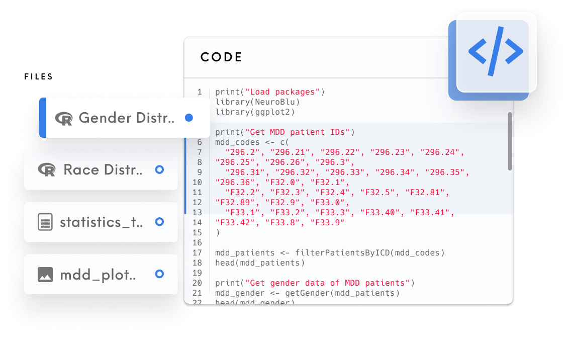 R Code interface that showcases the code panel with different types of files such as 'R', CSV, Image.