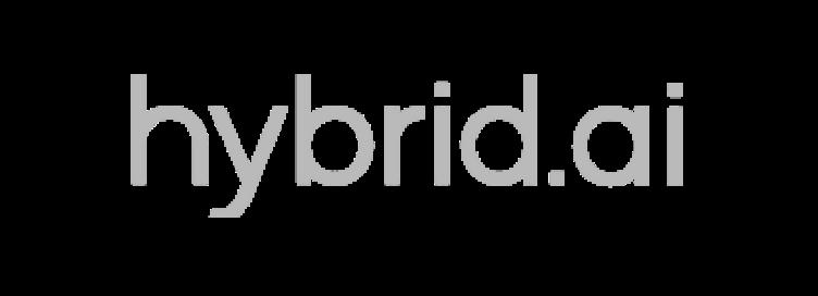 Hybrid ai logo