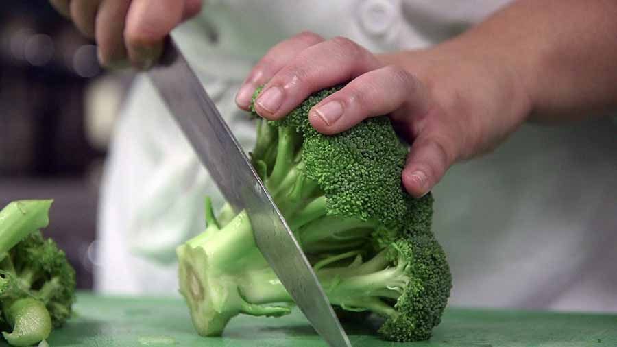 A culinary student chopping broccoli.