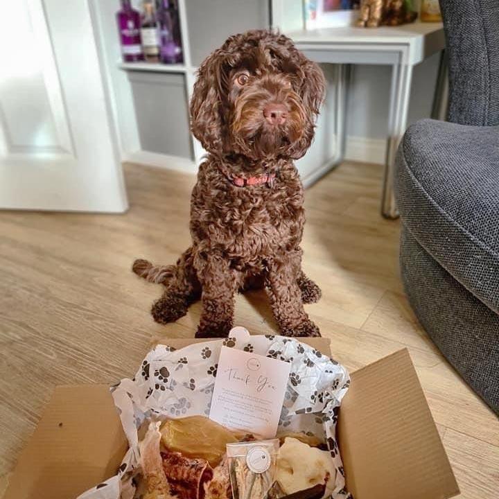 Naturally Pawfect dog treat box - buy online