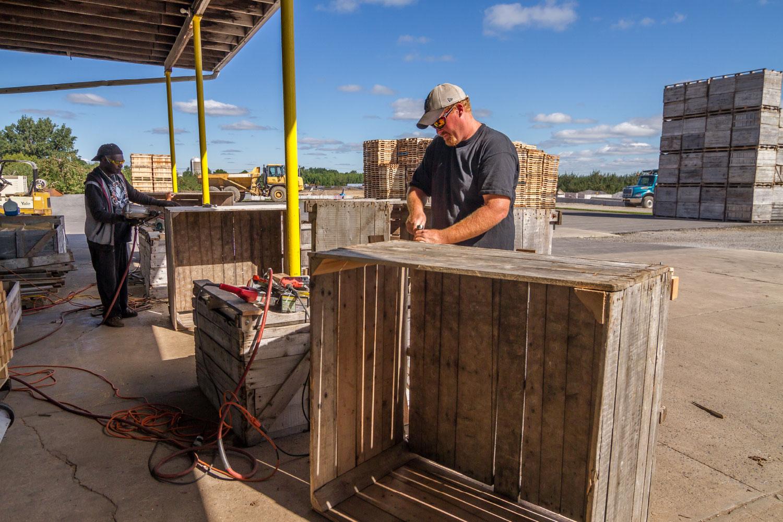 Building apple crates
