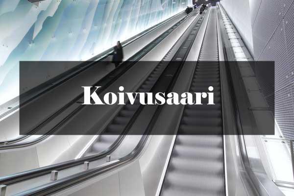 Metroarkkitehtuuri: Koivusaari