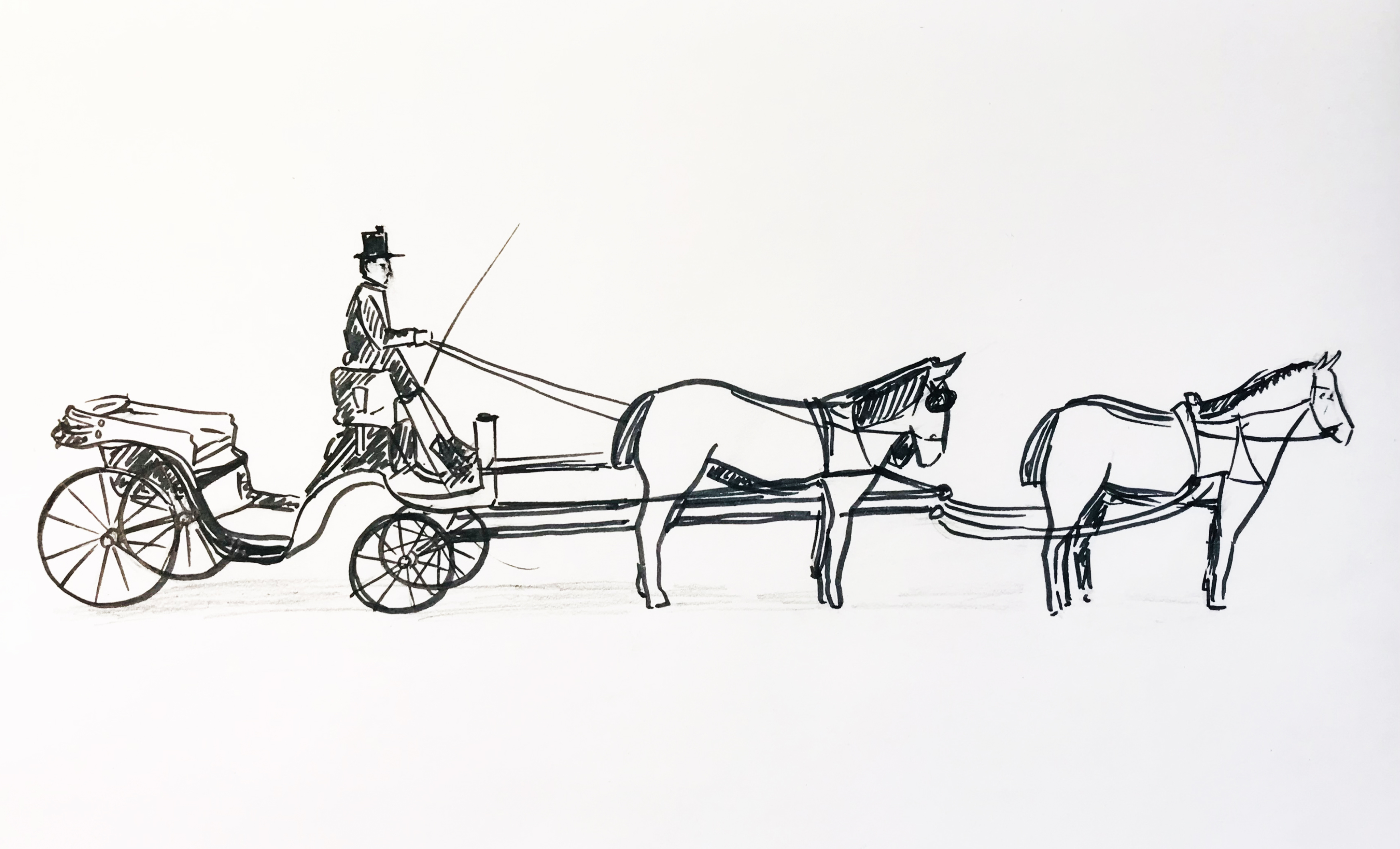 Piirroskuva hevosvaunuista.