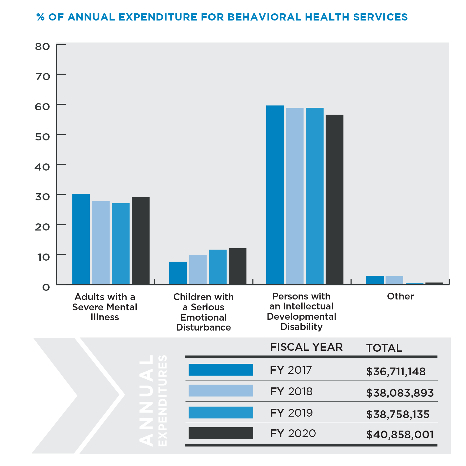 Annual Expenditure for Behavioral Health Services Graphic