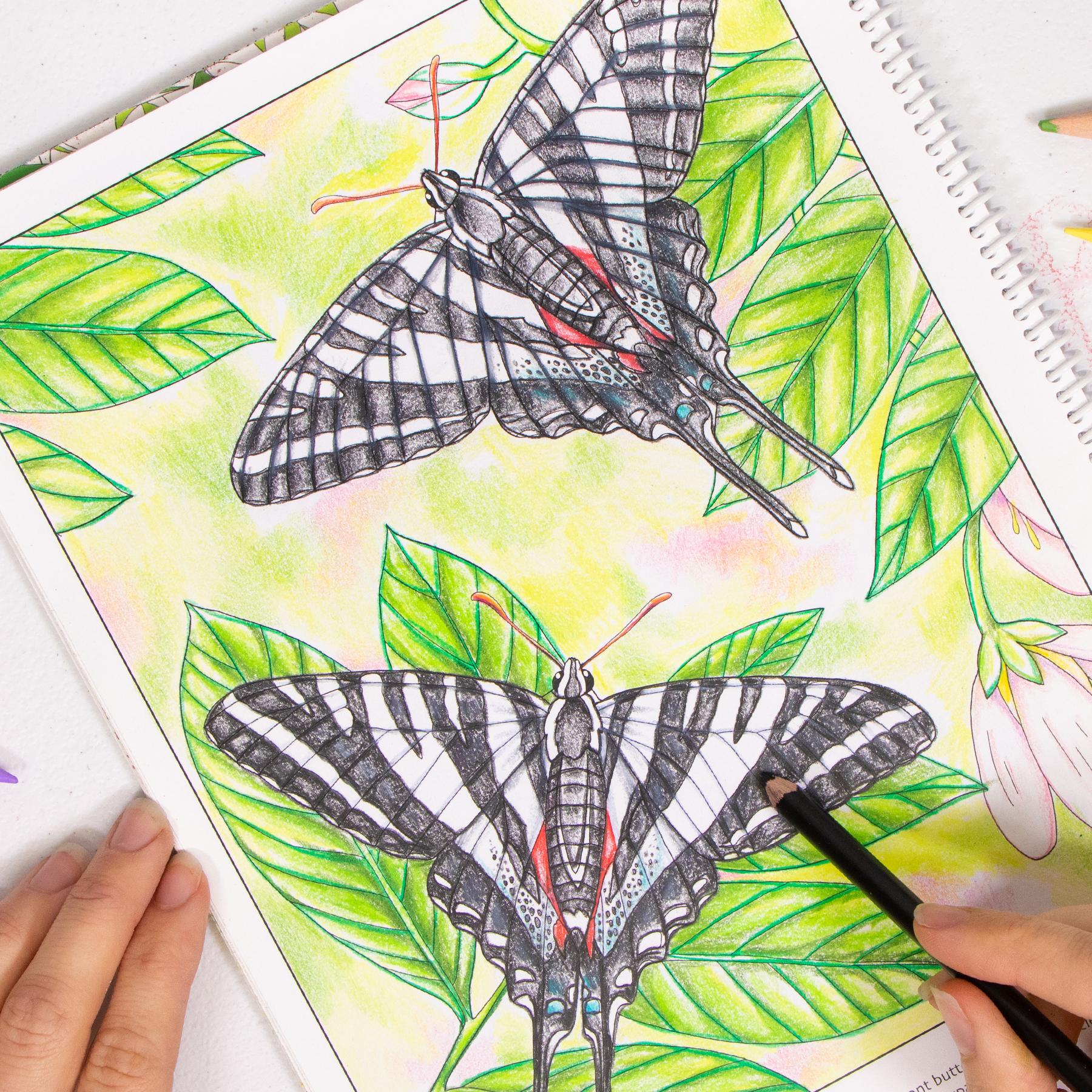 Zebra Swallowtail coloring page Wild Florida