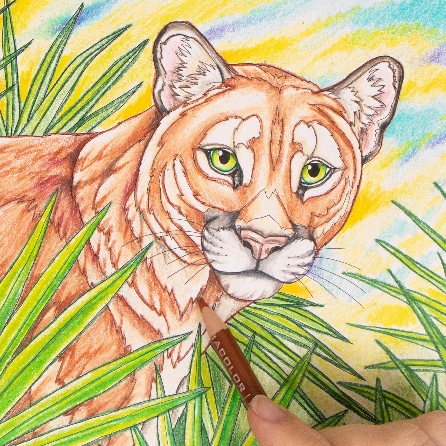 Florida Panther coloring page Wild Florida