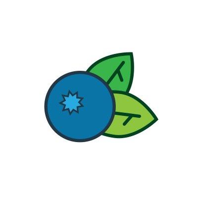 BlueberryCMS
