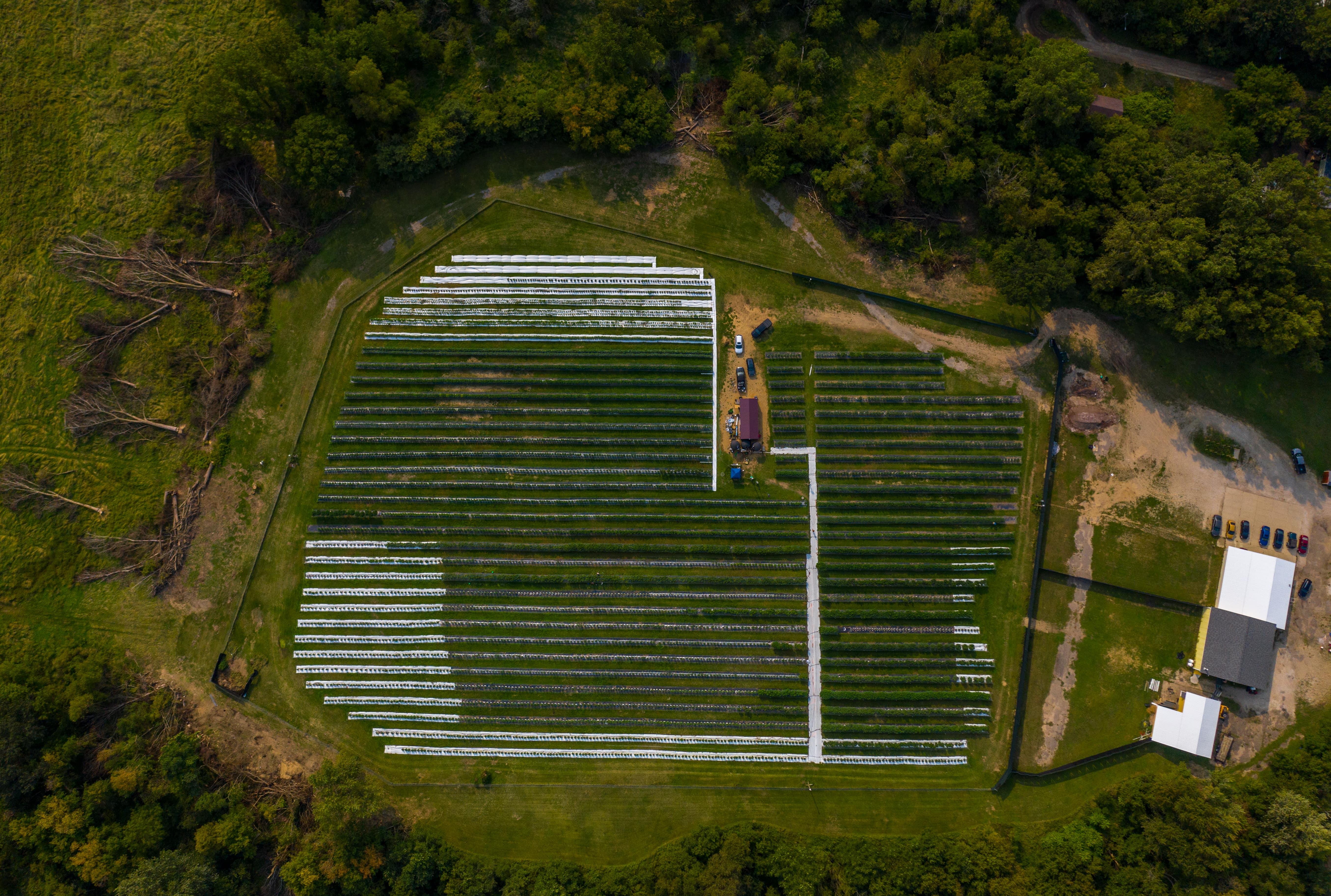 Top down shot of facilities