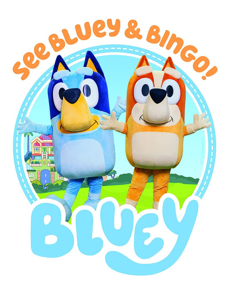 Bluey Comes To The Whitsundays!