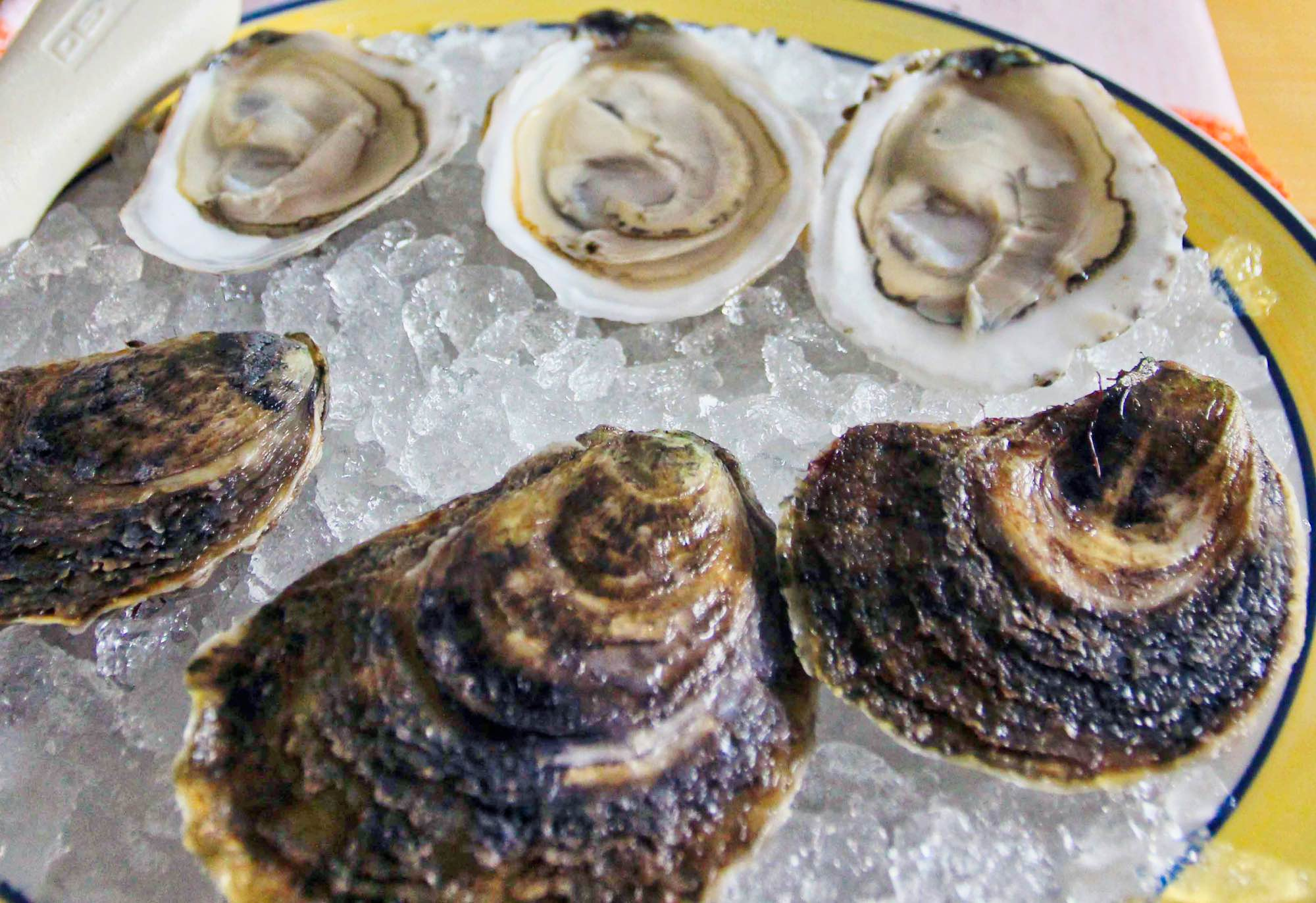 Boomamoto Oysters