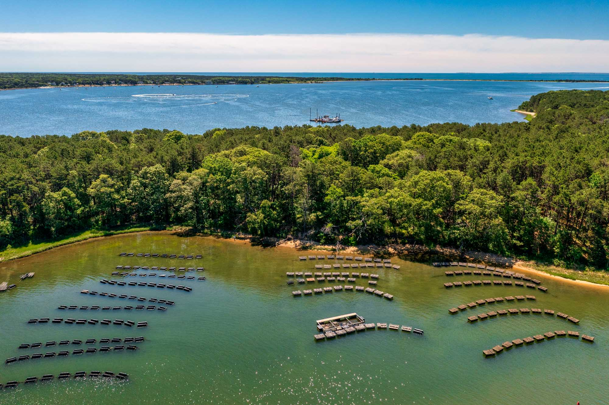 Cape Cod Oyster Company Aerial