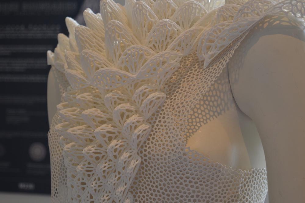 Blurred Boundaries - 3D printed dress