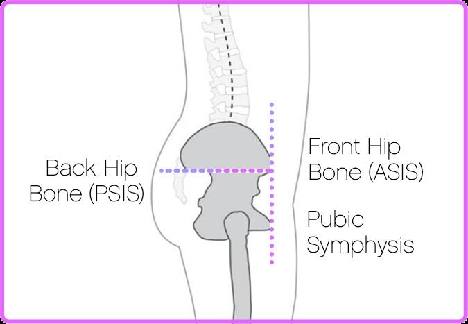 Balanced neutral spine