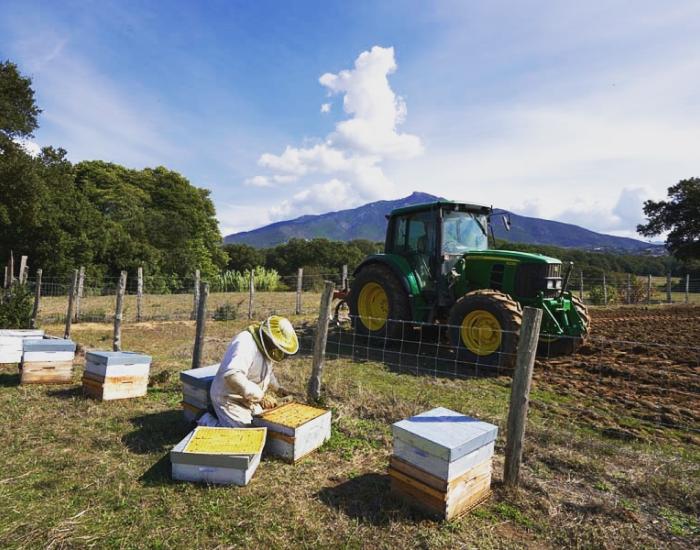 Jardin des abeilles - apiculture
