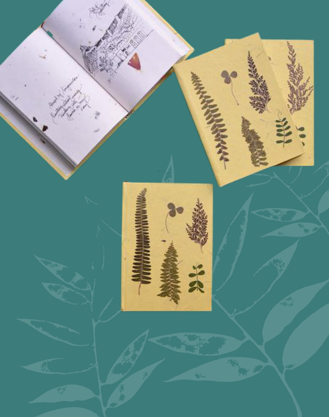 Pressed flower diary