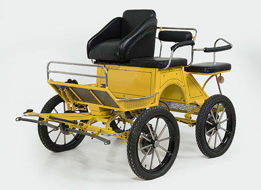 The Whip Horse Carriage