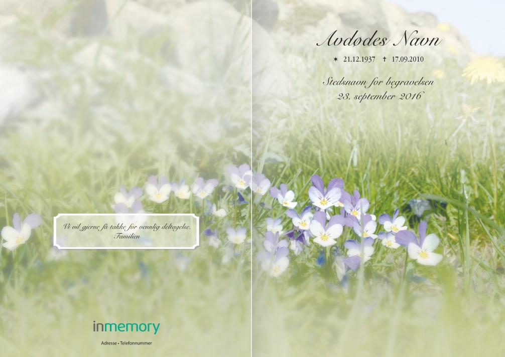 Natt og dag blomster VÅ-03