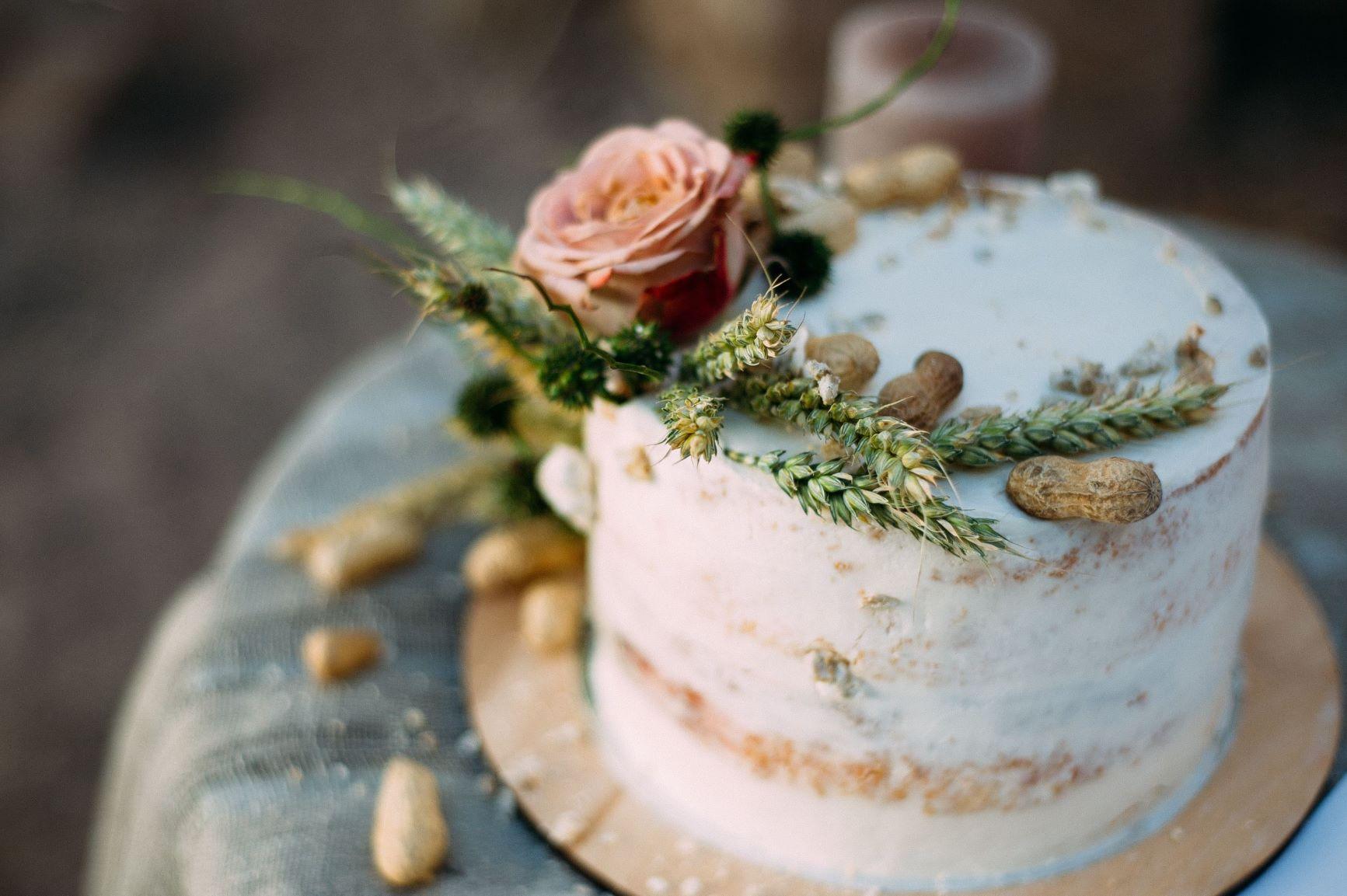 Virginia Blue Ridge Wedding