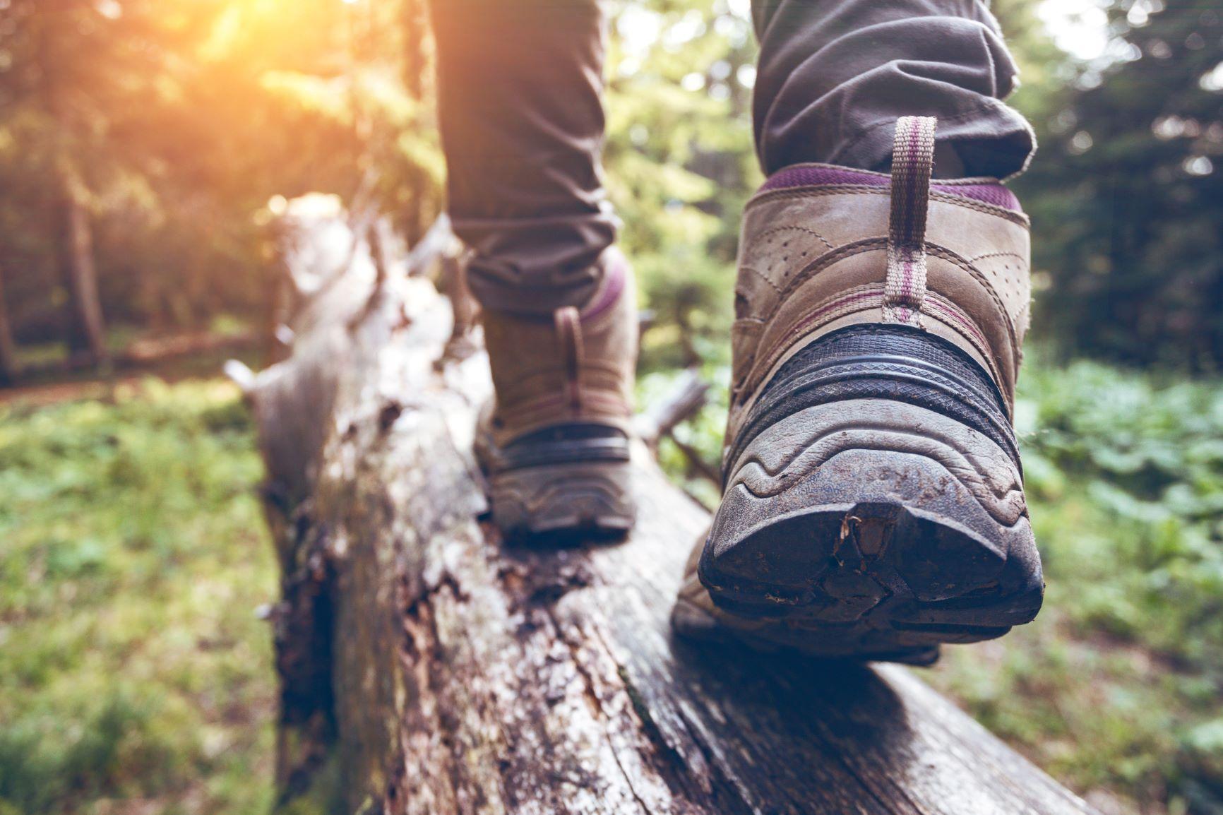 Hiking Event Venue