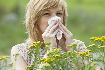 Allergies from pollen is very common.