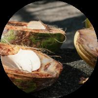 a closeup of three coconut halfs