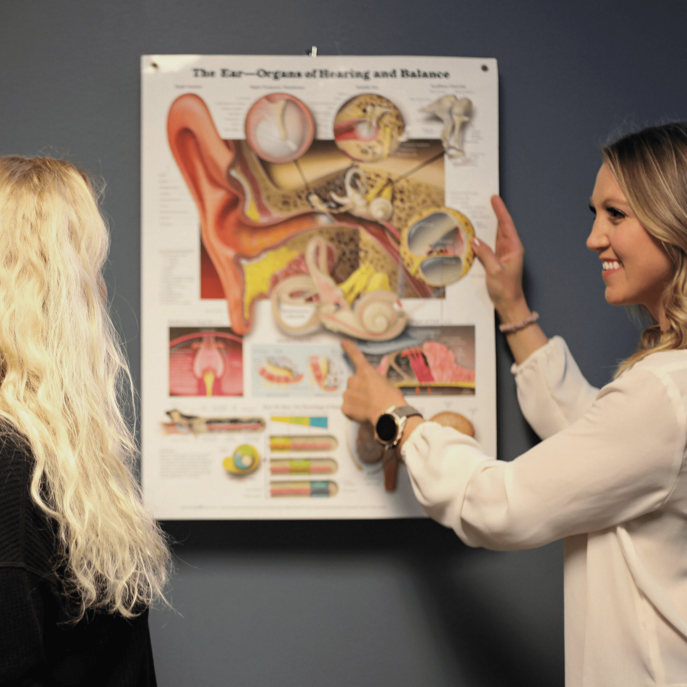A physical therapist pointing at an anatomy poster.