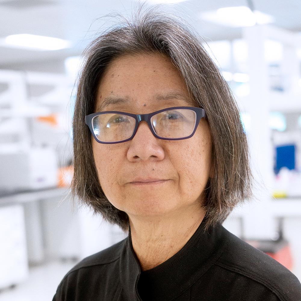 Nancy Cheng, PhD