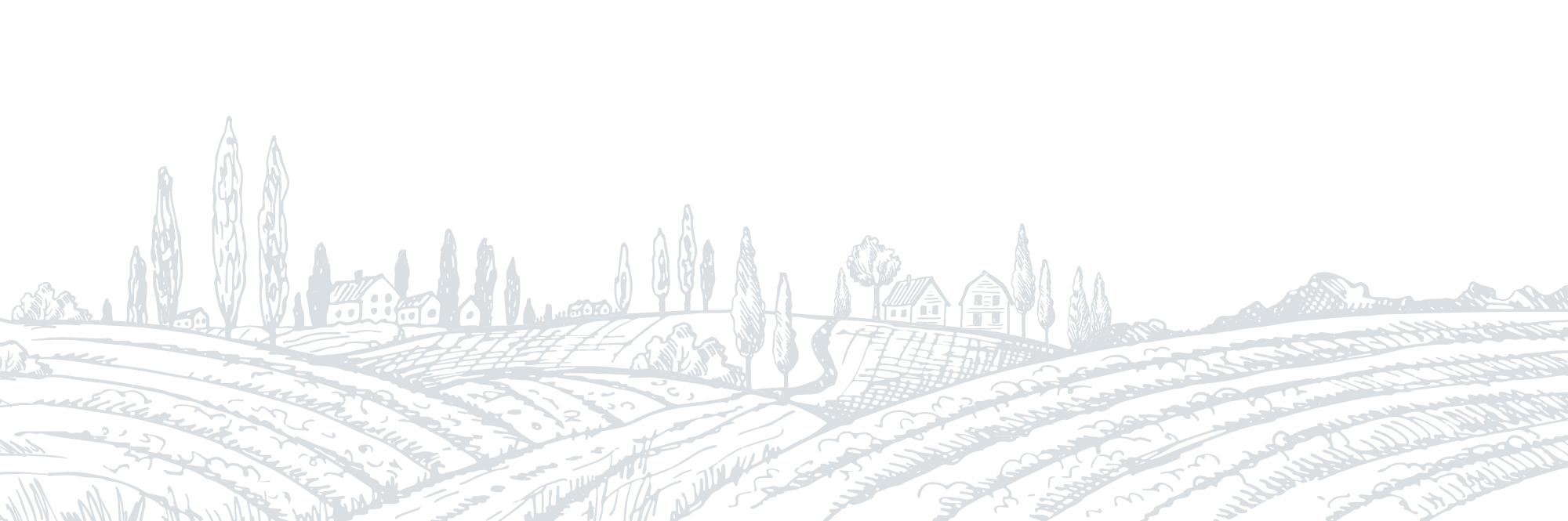 An illustrative field with plants and houses.