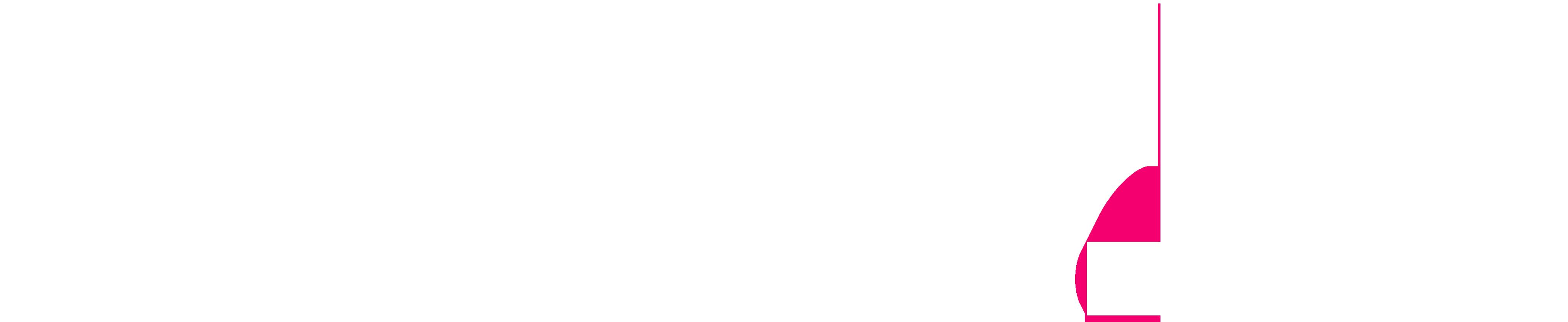 NS1. Logo