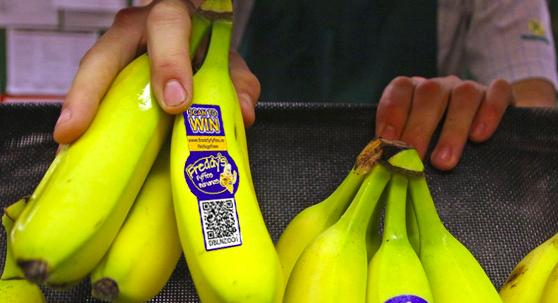 QR code sticker on bananas