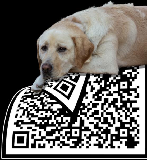 a sad dog lying on a big black and white QR code