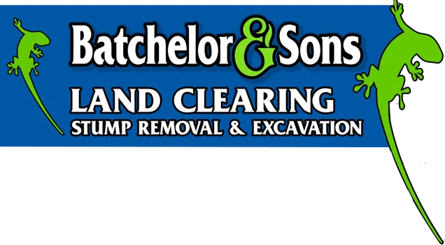Batchelor and Sons small logo