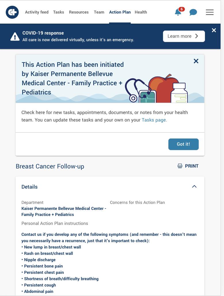 Careteam Action Plan example