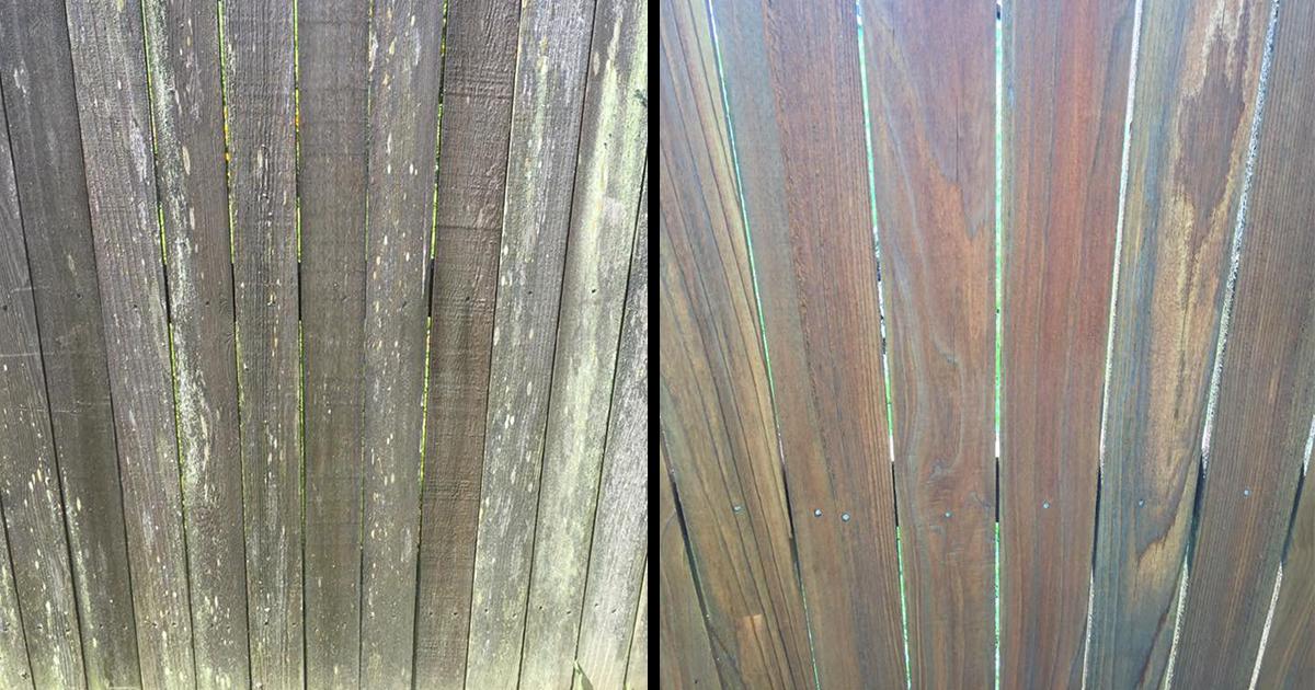 Fence Pressure Washing Service