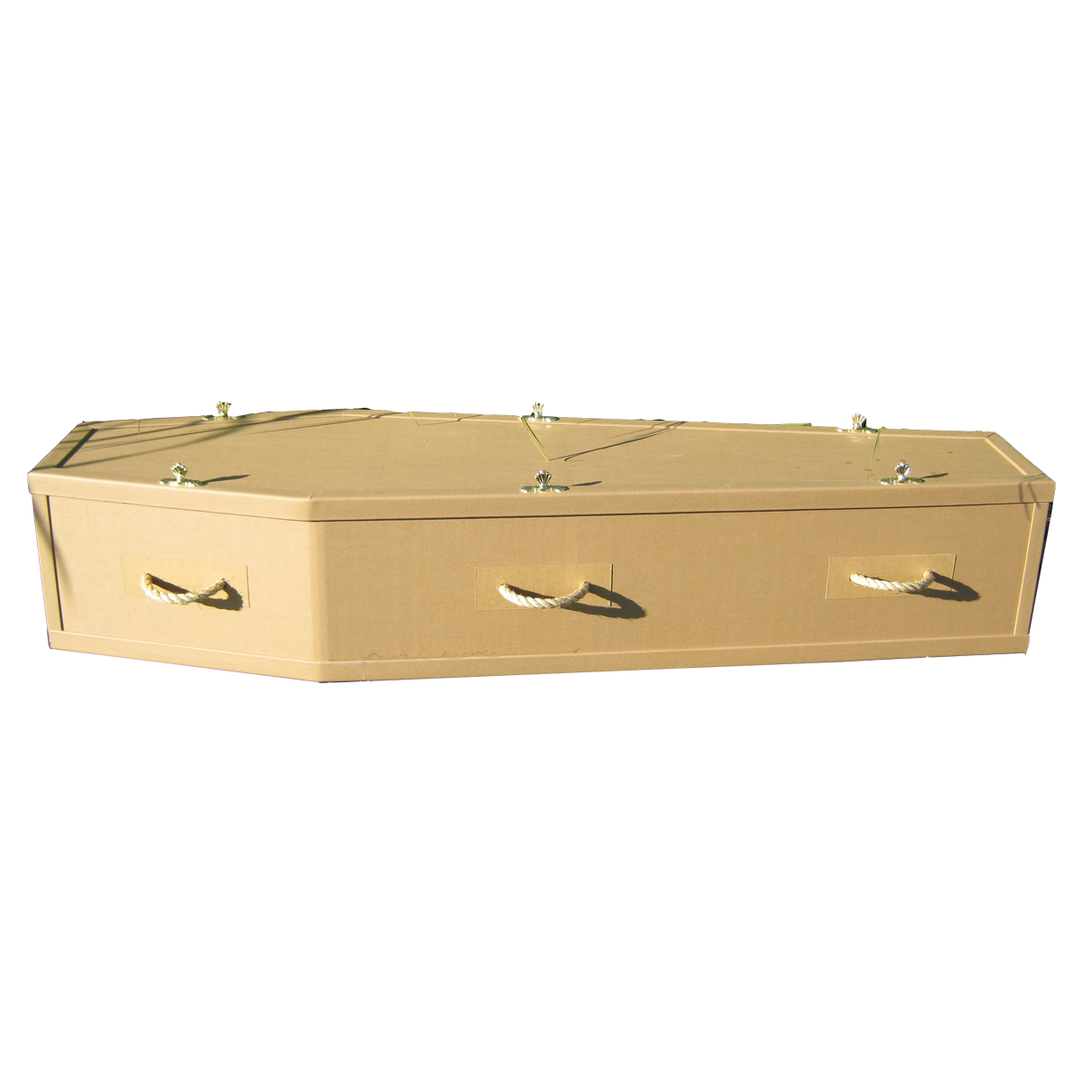 Dolphin Funeral Standard Coffin