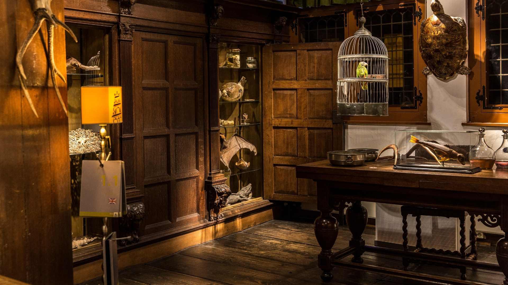 Westfries Museum kijkt verder dan eigen muren
