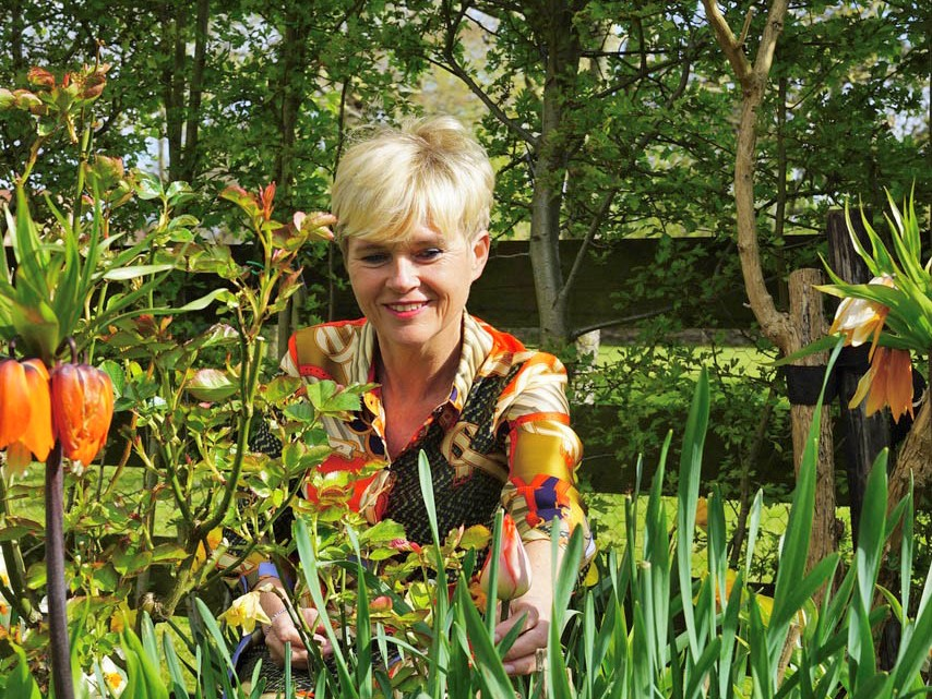 'Je hebt geen groene vingers nodig voor een mooie tuin'