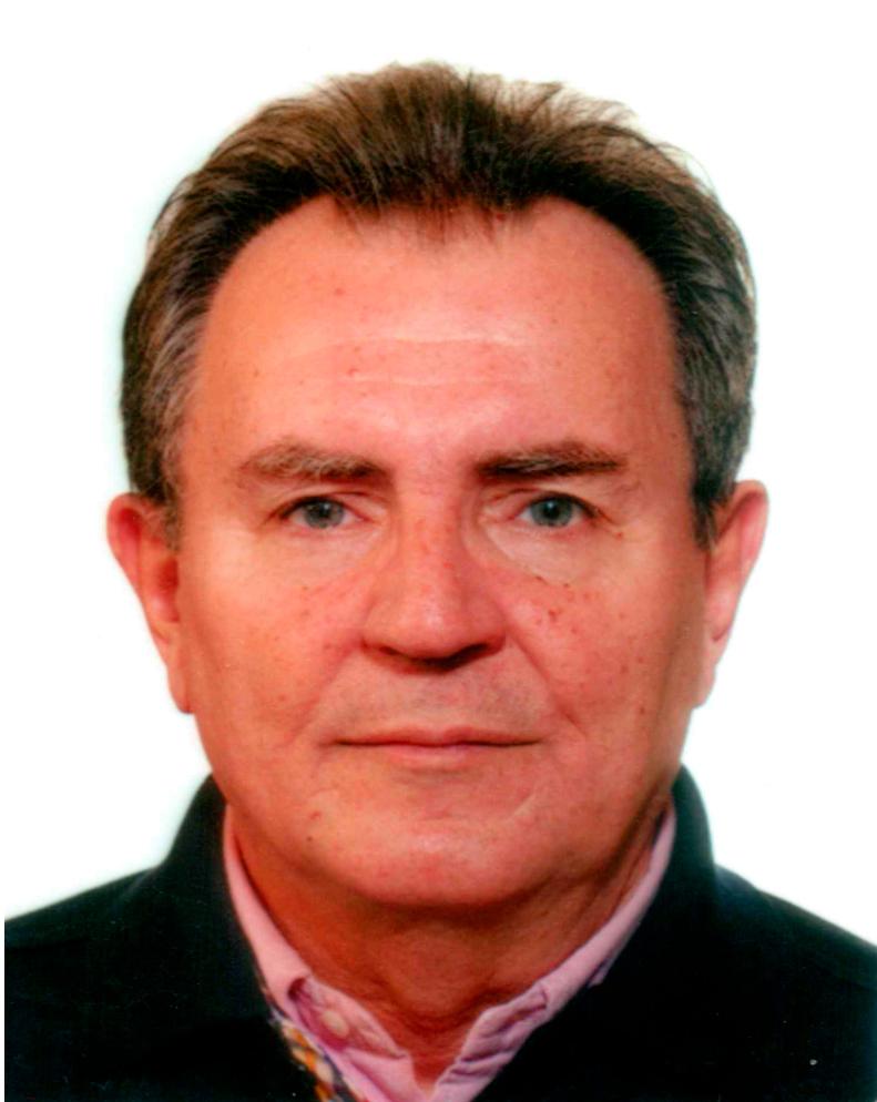 Stanislav Babić