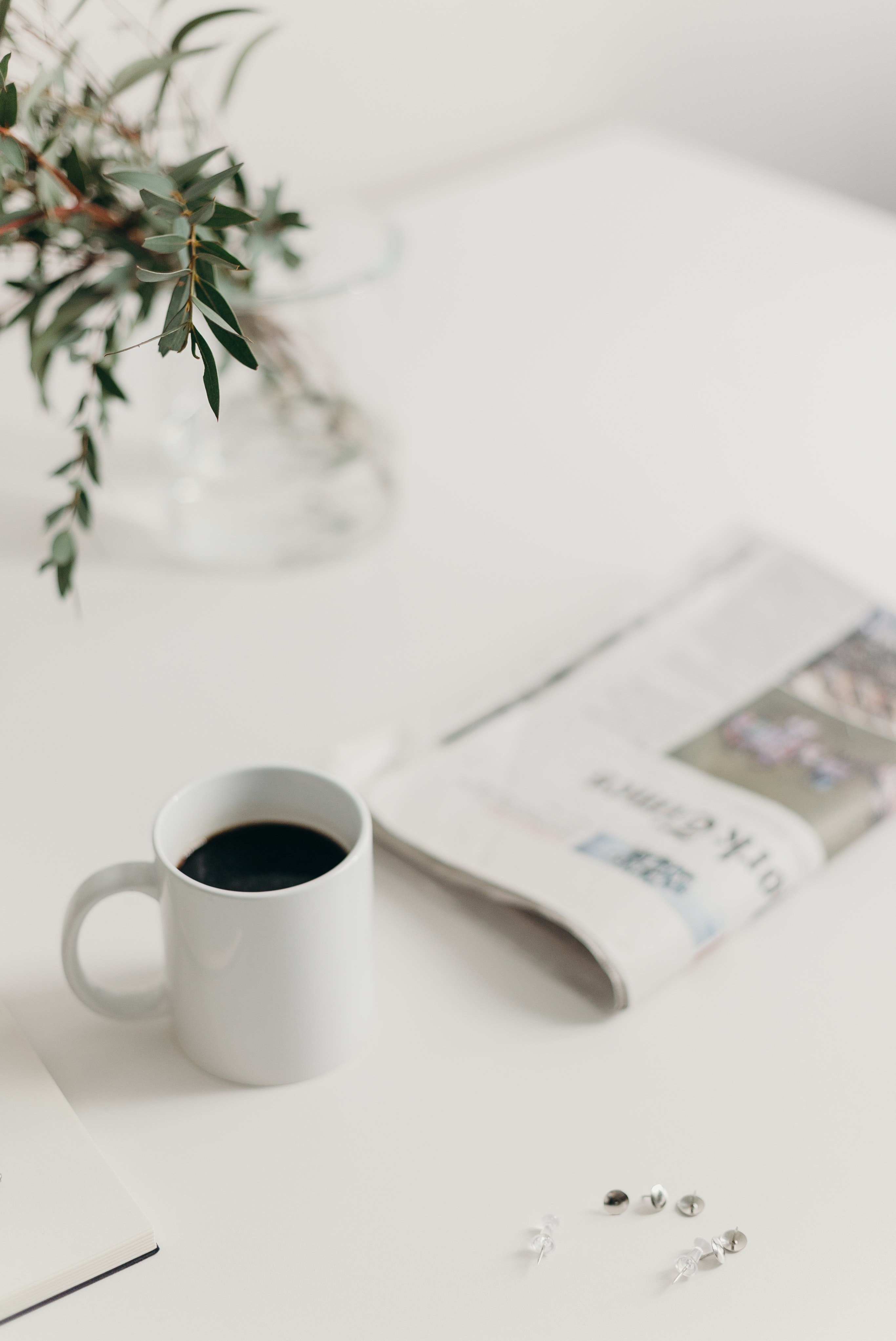Coffee, plant and newspaper on table
