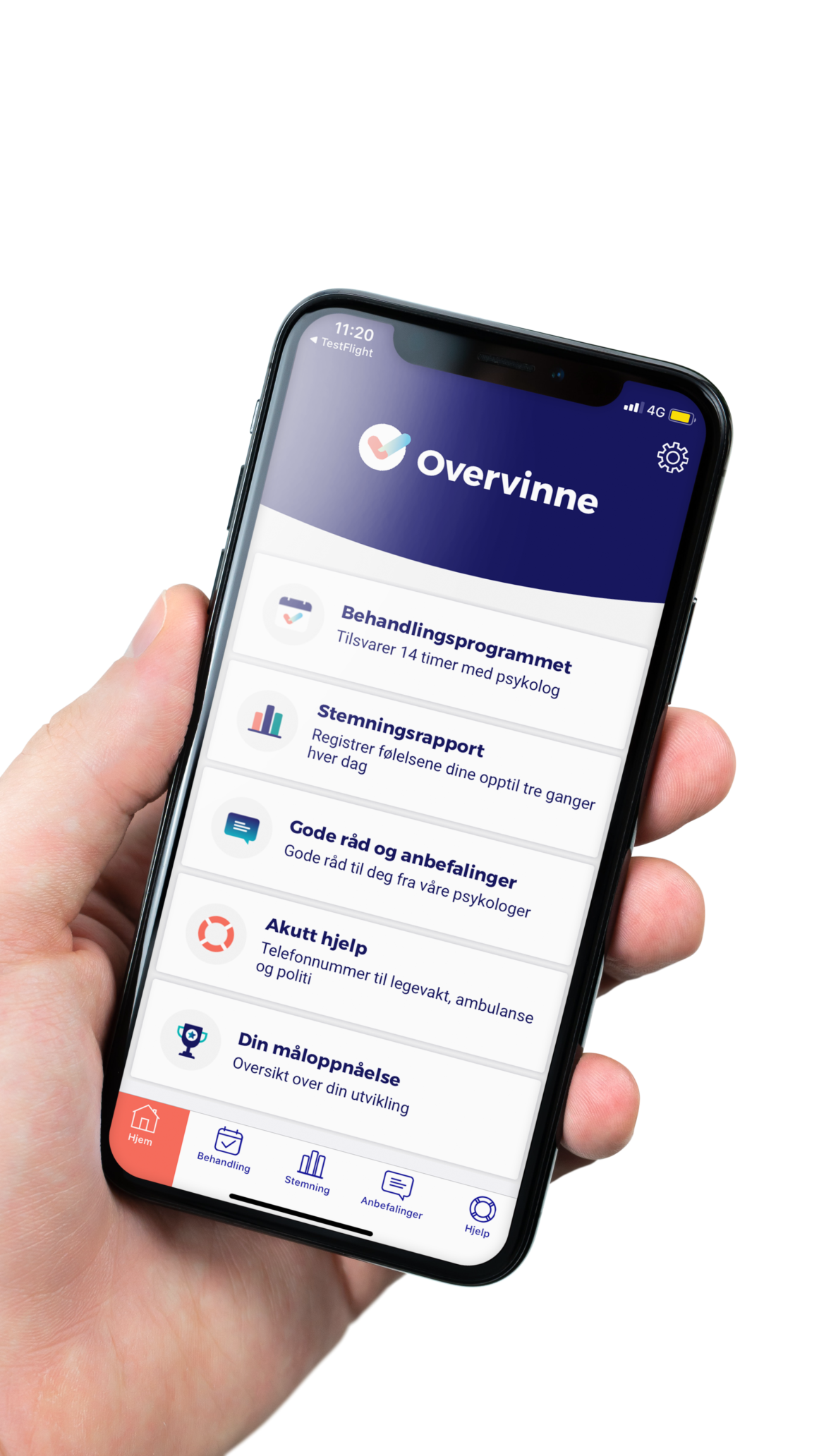 Picture of overvinne app