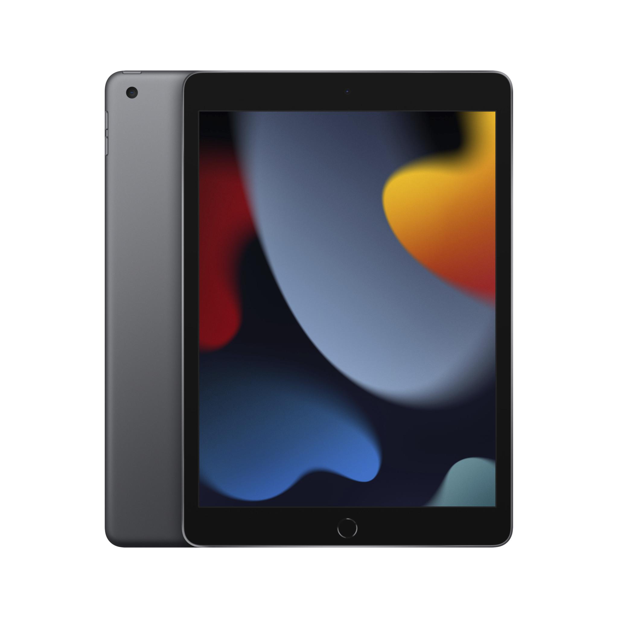 iPad 256Go