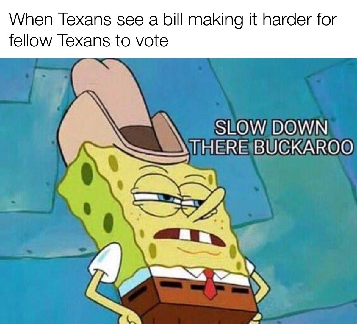 this town aint big enough for more voter suppression bills