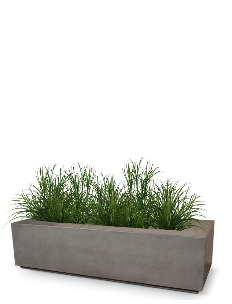 A planter box with plant species growing, representing growth