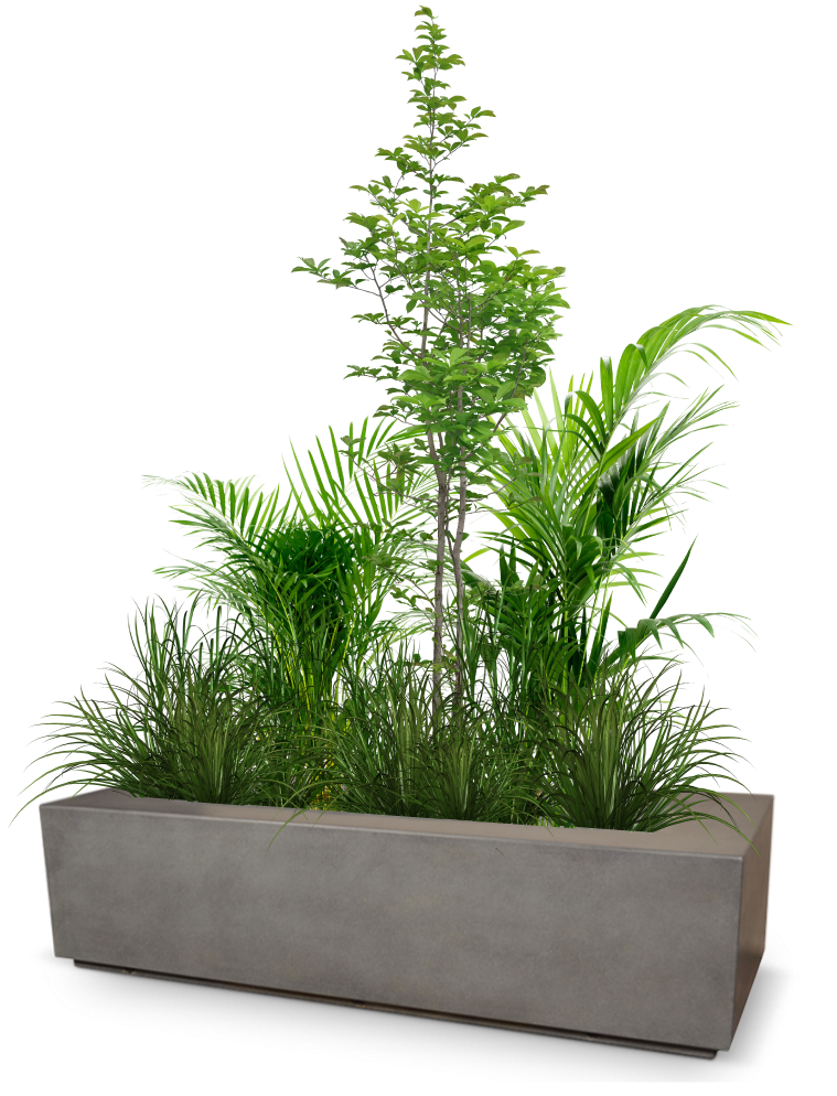 A planter box with several varieties of plant species growing, representing maximum growth