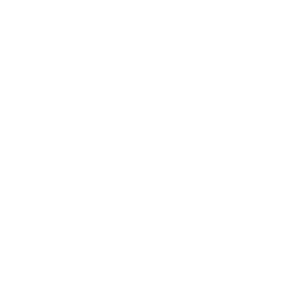 Peoples Action Logo
