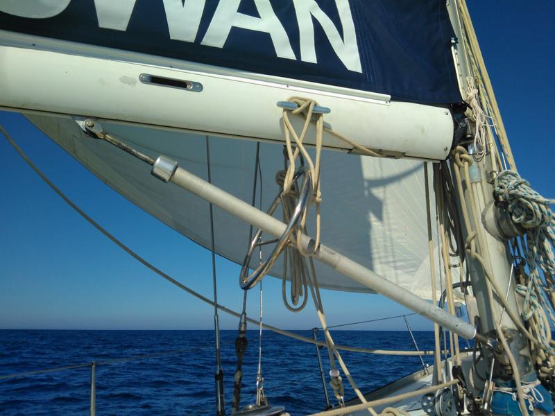 Blue swan boom and mast