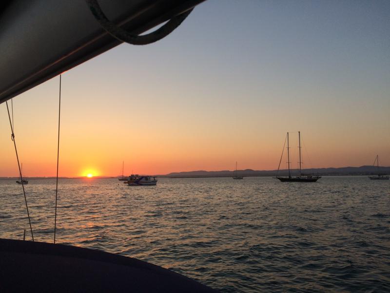 Sailing flotilla setting sail from the bay