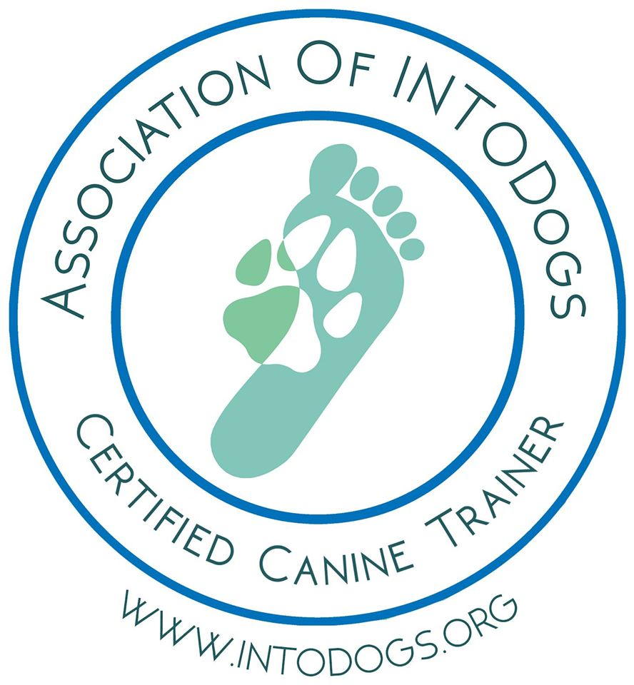INTODOGS - Certified canine trainer