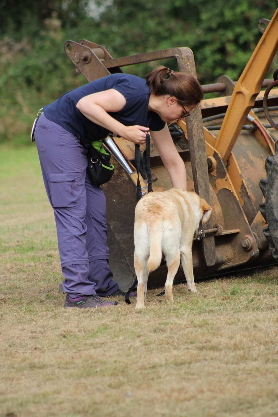 Scentwork training photo - tractor